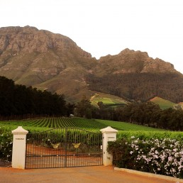 Thelema Mountain Wineyards Entrance